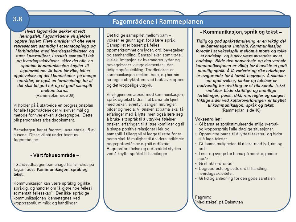 Fagområdene i Rammeplanen 3.8 Hvert fagområde dekker et vidt læringsfelt. Fagområdene vil sjelden opptre isolert. Flere områder vil ofte være represen