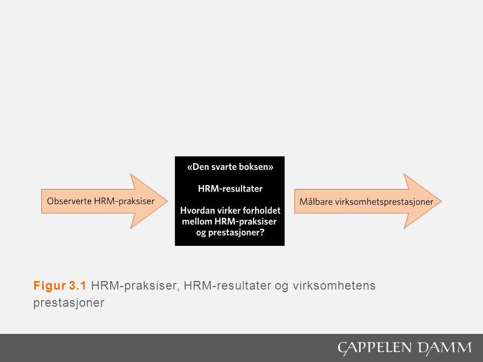 Figur 3.1 HRM-praksiser, HRM-resultater og virksomhetens prestasjoner