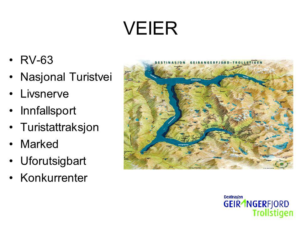 VEIER RV-63 Nasjonal Turistvei Livsnerve Innfallsport Turistattraksjon Marked Uforutsigbart Konkurrenter