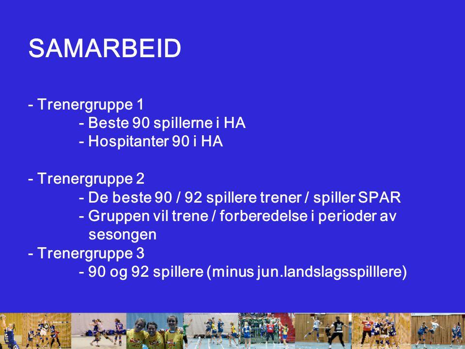 SAMARBEID - Trenergruppe 1 - Beste 90 spillerne i HA - Hospitanter 90 i HA - Trenergruppe 2 - De beste 90 / 92 spillere trener / spiller SPAR - Gruppen vil trene / forberedelse i perioder av sesongen - Trenergruppe 3 - 90 og 92 spillere (minus jun.landslagsspilllere)