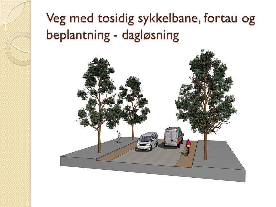 Veg med tosidig sykkelbane, fortau og beplantning - dagløsning