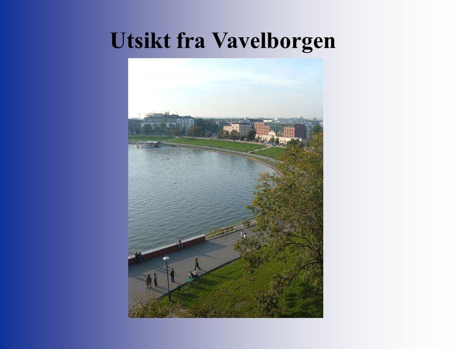 Utsikt fra Vavelborgen