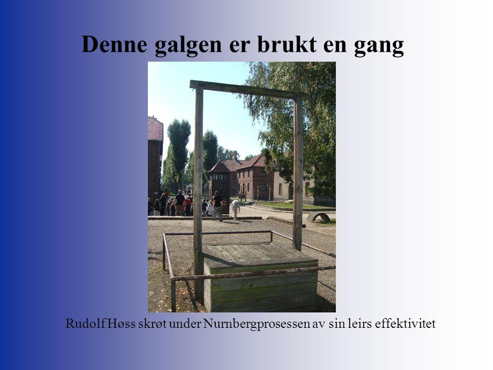 Denne galgen er brukt en gang Rudolf Høss skrøt under Nurnbergprosessen av sin leirs effektivitet