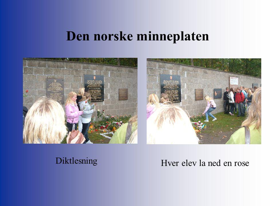Den norske minneplaten Diktlesning Hver elev la ned en rose