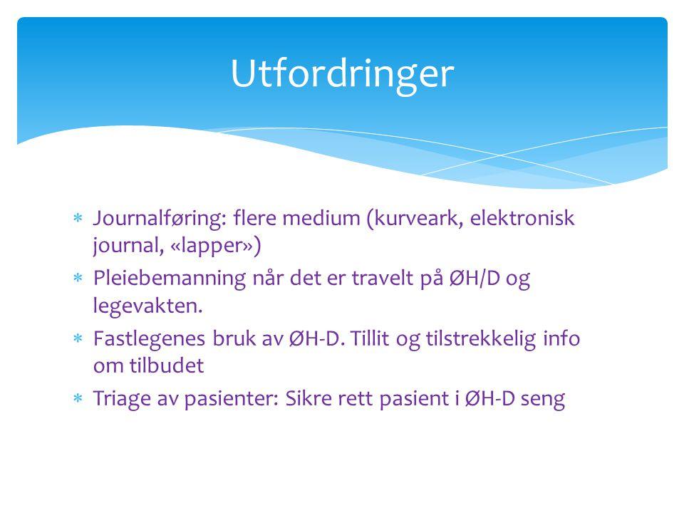  Journalføring: flere medium (kurveark, elektronisk journal, «lapper»)  Pleiebemanning når det er travelt på ØH/D og legevakten.  Fastlegenes bruk