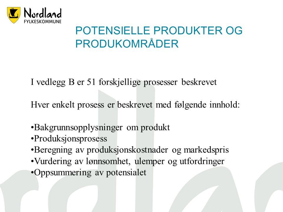 POTENSIELLE PRODUKTER OG PRODUKOMRÅDER I vedlegg B er 51 forskjellige prosesser beskrevet Hver enkelt prosess er beskrevet med følgende innhold: Bakgrunnsopplysninger om produkt Produksjonsprosess Beregning av produksjonskostnader og markedspris Vurdering av lønnsomhet, ulemper og utfordringer Oppsummering av potensialet