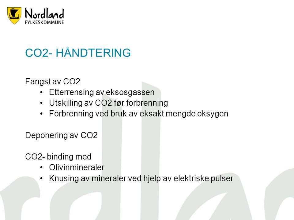 CO2- HÅNDTERING Fangst av CO2 Etterrensing av eksosgassen Utskilling av CO2 før forbrenning Forbrenning ved bruk av eksakt mengde oksygen Deponering av CO2 CO2- binding med Olivinmineraler Knusing av mineraler ved hjelp av elektriske pulser