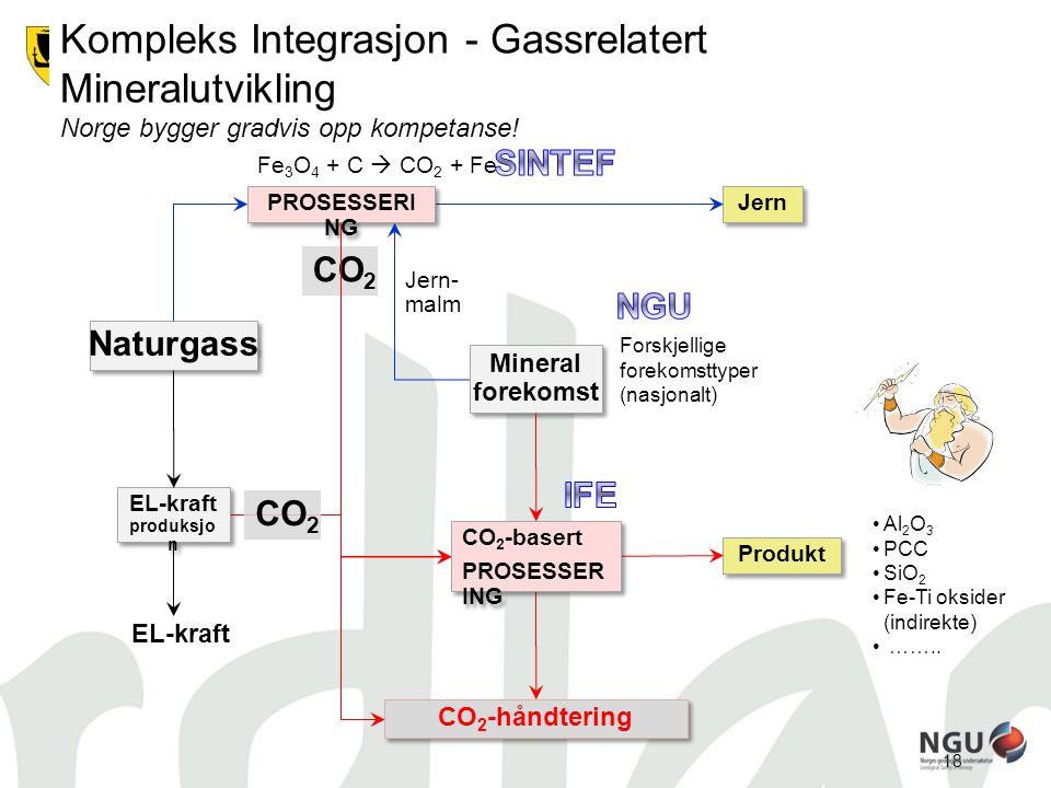 18 GASS OG MINERALER Naturgass EL-kraft produksjo n EL-kraft produksjo n EL-kraft Mineral forekomst Mineral forekomst Produkt CO 2 -håndtering CO 2 -b