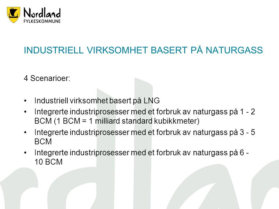 INDUSTRIELL VIRKSOMHET BASERT PÅ NATURGASS 4 Scenarioer: Industriell virksomhet basert på LNG Integrerte industriprosesser med et forbruk av naturgass