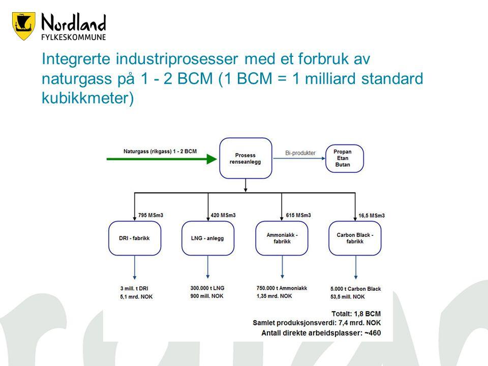 Integrerte industriprosesser med et forbruk av naturgass på 1 - 2 BCM (1 BCM = 1 milliard standard kubikkmeter)