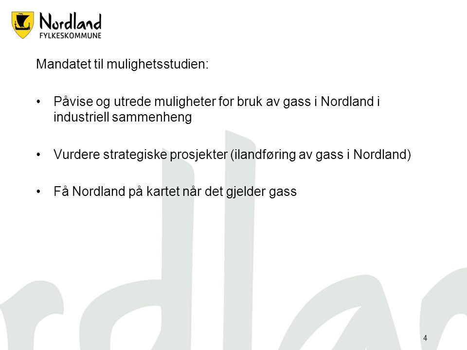 4 Mandatet til mulighetsstudien: Påvise og utrede muligheter for bruk av gass i Nordland i industriell sammenheng Vurdere strategiske prosjekter (ilandføring av gass i Nordland) Få Nordland på kartet når det gjelder gass