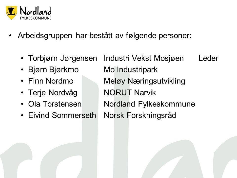Arbeidsgruppen har bestått av følgende personer: Torbjørn JørgensenIndustri Vekst MosjøenLeder Bjørn BjørkmoMo Industripark Finn NordmoMeløy Næringsut