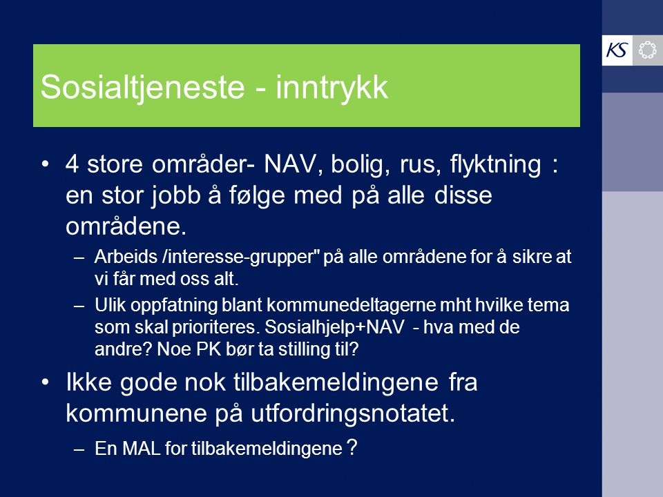 Sosialtjeneste - inntrykk 4 store områder- NAV, bolig, rus, flyktning : en stor jobb å følge med på alle disse områdene.
