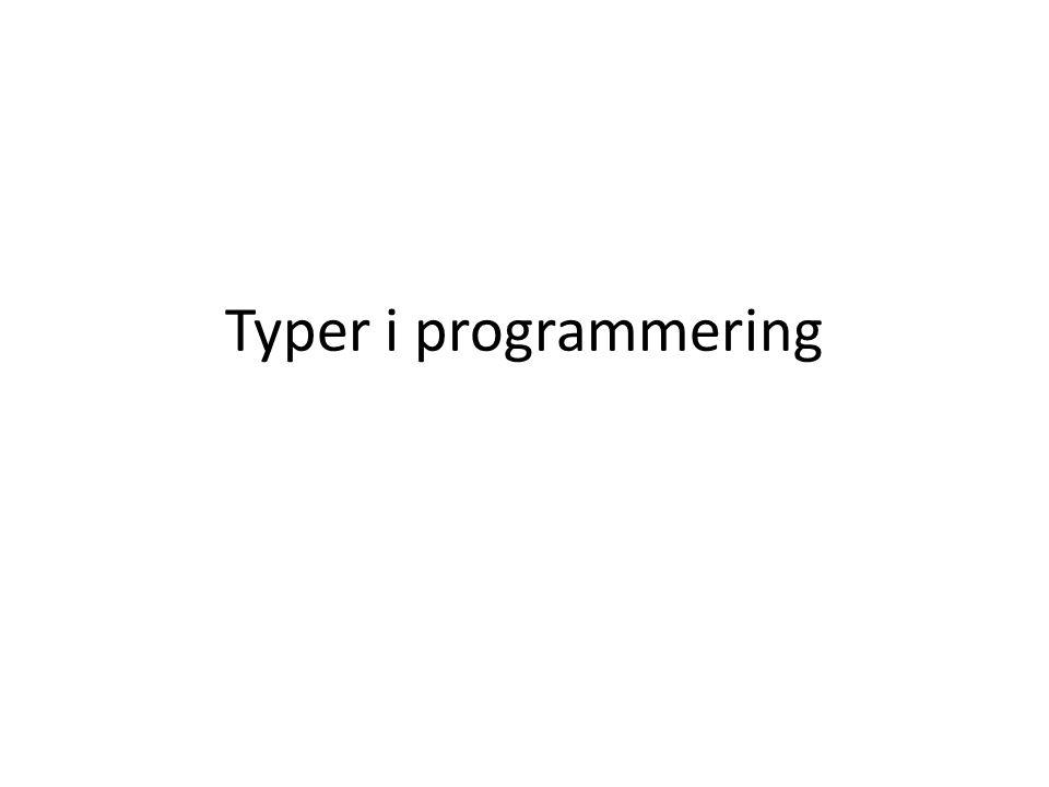 Typer i programmering