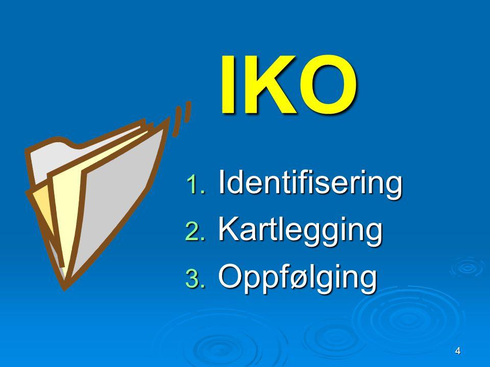 IKO 1. Identifisering 2. Kartlegging 3. Oppfølging 4