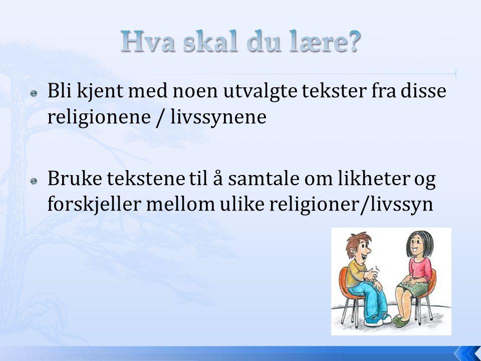  Bli kjent med noen utvalgte tekster fra disse religionene / livssynene  Bruke tekstene til å samtale om likheter og forskjeller mellom ulike religi