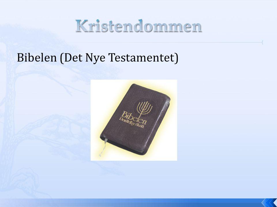 Bibelen (Det Nye Testamentet)
