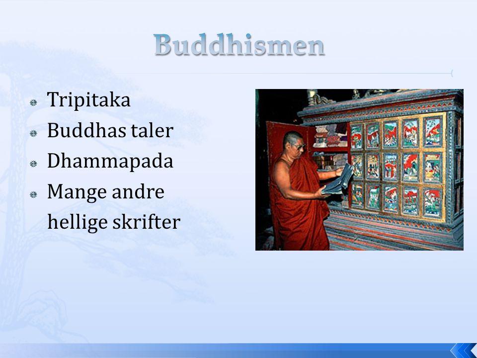  Tripitaka  Buddhas taler  Dhammapada  Mange andre hellige skrifter