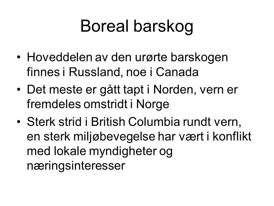 Boreal barskog Hoveddelen av den urørte barskogen finnes i Russland, noe i Canada Det meste er gått tapt i Norden, vern er fremdeles omstridt i Norge Sterk strid i British Columbia rundt vern, en sterk miljøbevegelse har vært i konflikt med lokale myndigheter og næringsinteresser