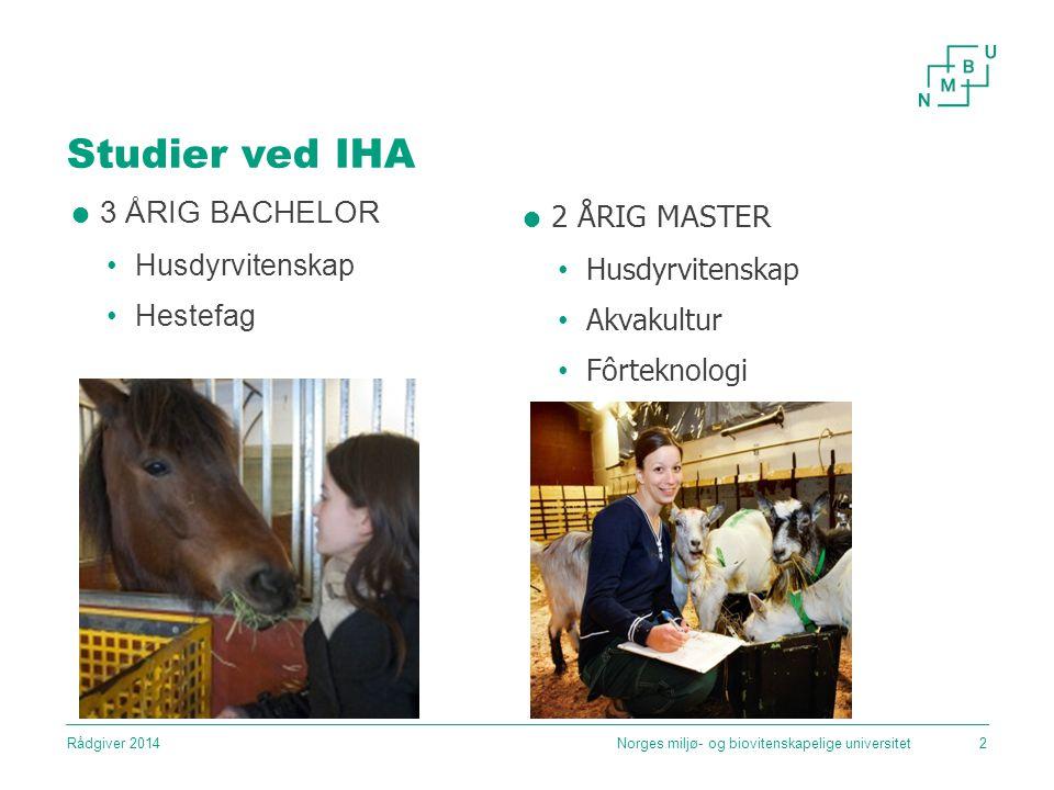 Studier ved IHA Norges miljø- og biovitenskapelige universitet2  3 ÅRIG BACHELOR Husdyrvitenskap Hestefag  2 ÅRIG MASTER Husdyrvitenskap Akvakultur Fôrteknologi Rådgiver 2014