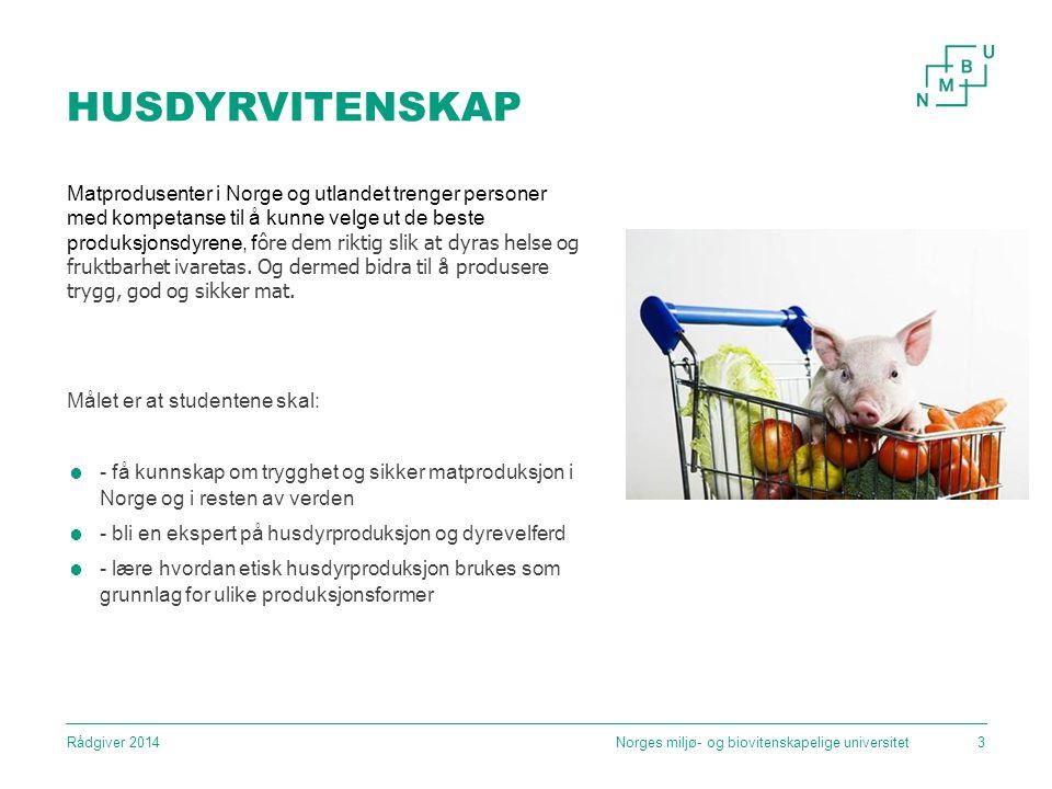 HUSDYRVITENSKAP Matprodusenter i Norge og utlandet trenger personer med kompetanse til å kunne velge ut de beste produksjonsdyrene, f ôre dem riktig slik at dyras helse og fruktbarhet ivaretas.