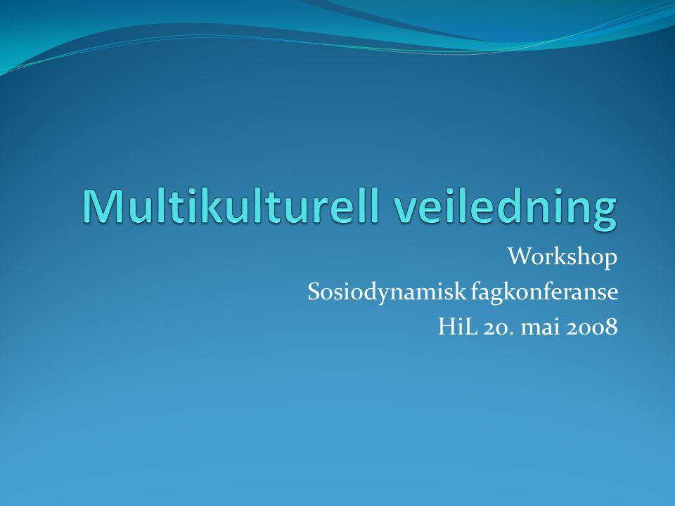 Disposisjon workshop 12.30-12.45: Bakgrunn 12.45-13.15: Et flerkulturelt veiledningsmøte 13.15-13.45: diskusjon om utvalgte tema Roger Kjærgård & Erik Haug