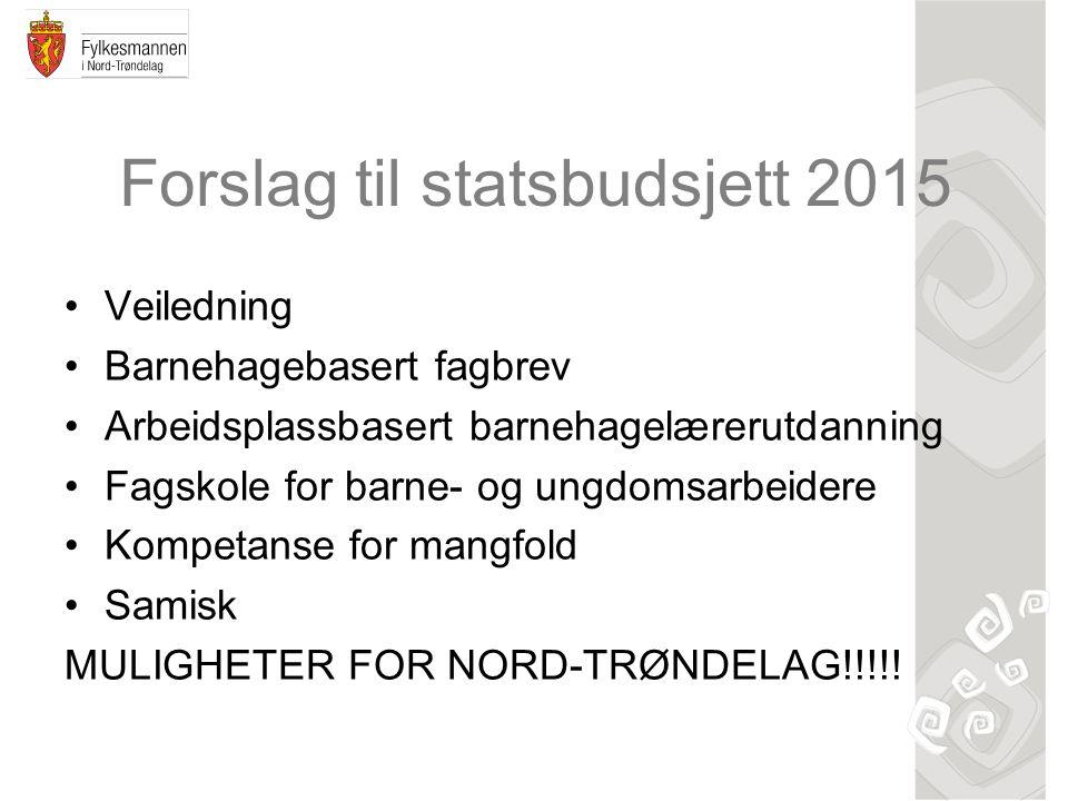 Forslag til statsbudsjett 2015 Veiledning Barnehagebasert fagbrev Arbeidsplassbasert barnehagelærerutdanning Fagskole for barne- og ungdomsarbeidere Kompetanse for mangfold Samisk MULIGHETER FOR NORD-TRØNDELAG!!!!!