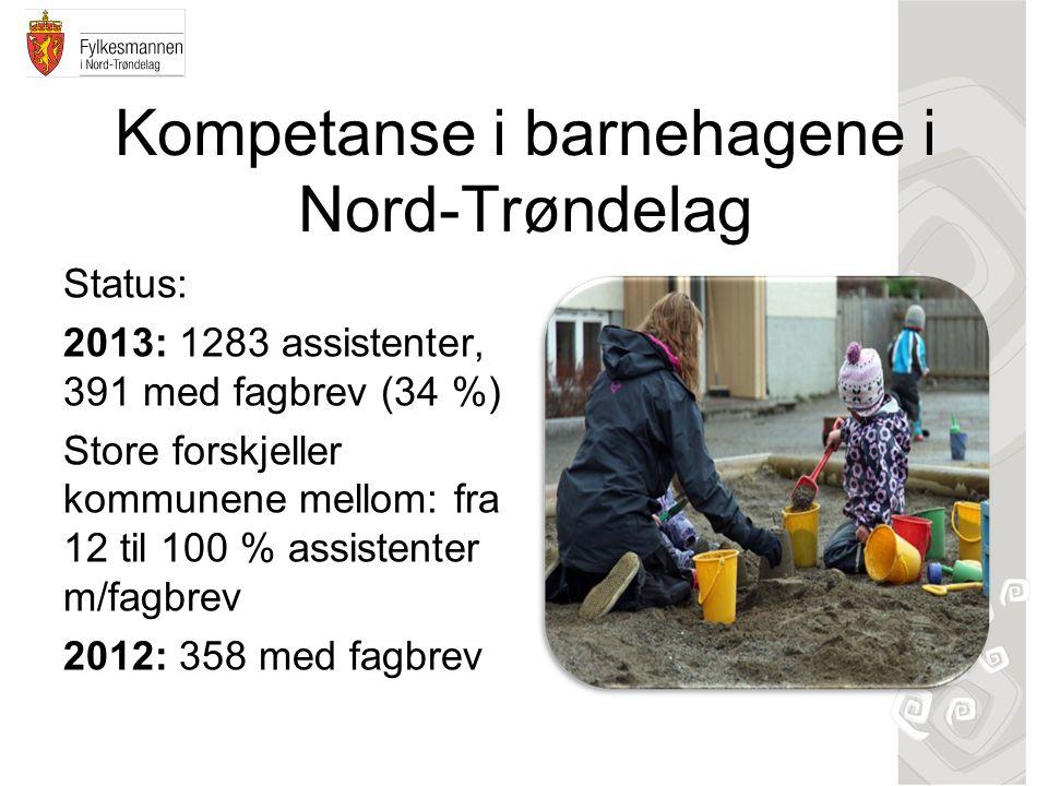 Kompetanse i barnehagene i Nord-Trøndelag Status: 2013: 1283 assistenter, 391 med fagbrev (34 %) Store forskjeller kommunene mellom: fra 12 til 100 % assistenter m/fagbrev 2012: 358 med fagbrev