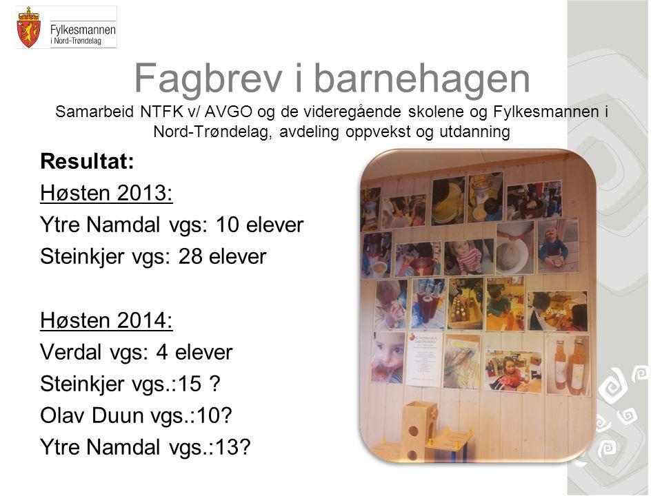 Fagbrev i barnehagen Samarbeid NTFK v/ AVGO og de videregående skolene og Fylkesmannen i Nord-Trøndelag, avdeling oppvekst og utdanning Resultat: Høst