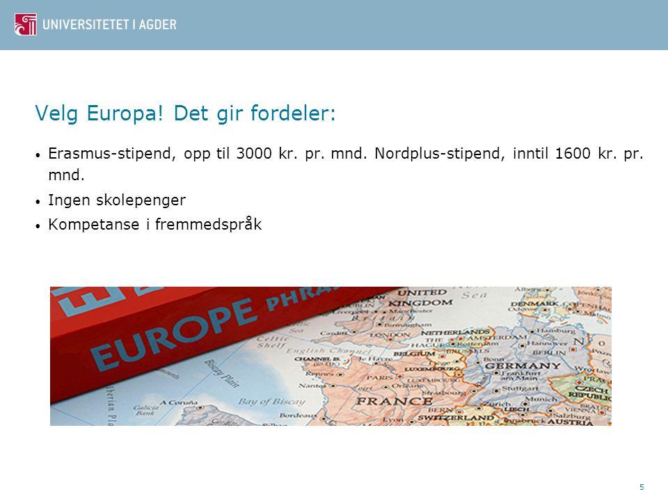 5 Velg Europa. Det gir fordeler: Erasmus-stipend, opp til 3000 kr.