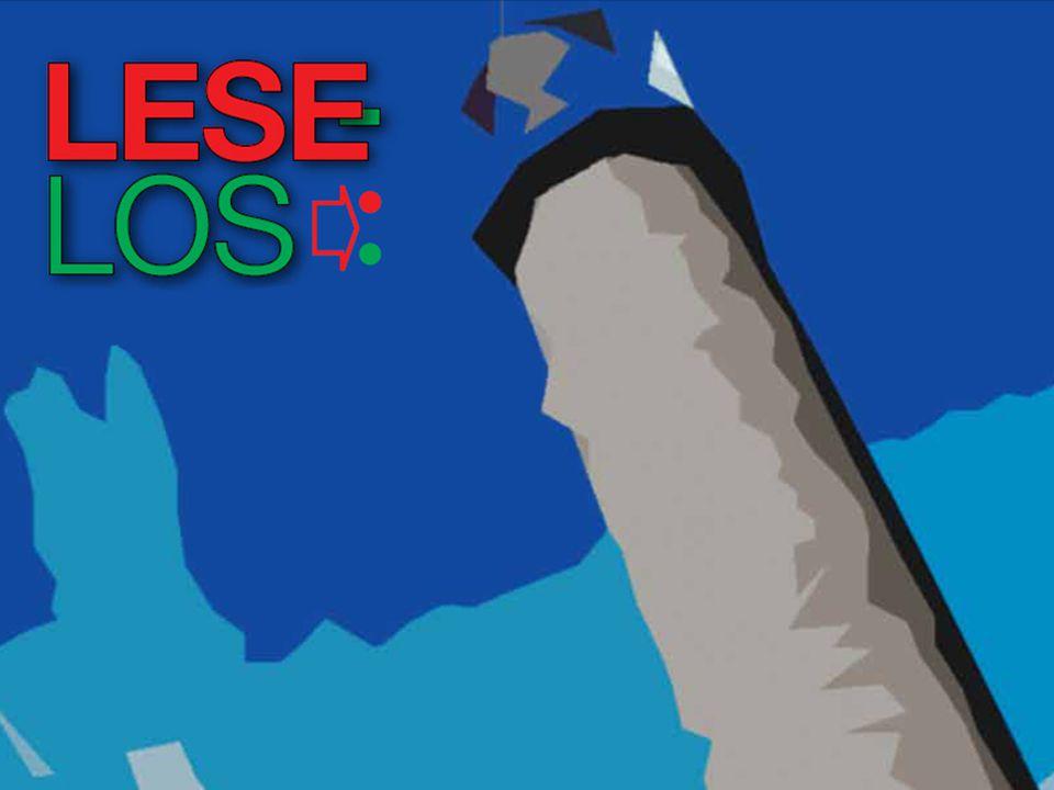 «Leselos er et observasjonsverktøy som er beregnet på å støtte elevenes leseutvikling.