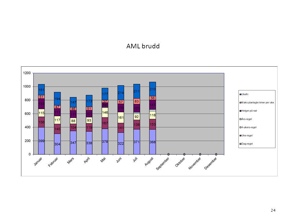 AML brudd 24 4. Bemanning