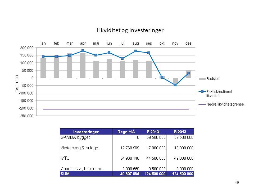 Likviditet og investeringer 46 6. Økonomi