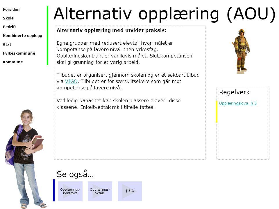 Alternativ opplæring (AOU) Se også… Opplærings- avtale Opplærings- kontrakt § 3-3 Alternativ opplæring med utvidet praksis: Egne grupper med redusert