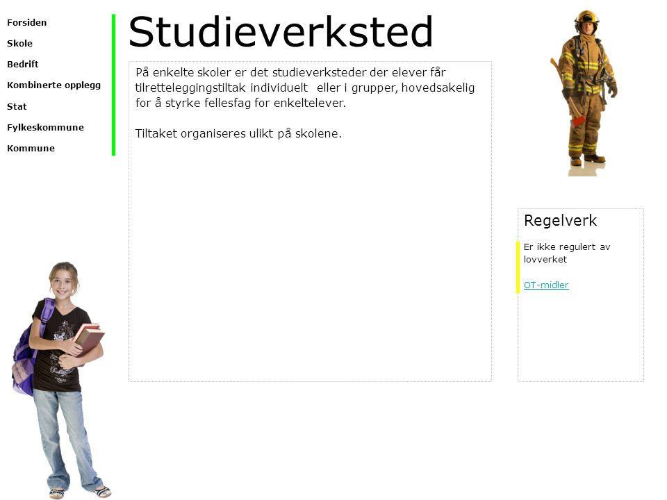 Studieverksted På enkelte skoler er det studieverksteder der elever får tilretteleggingstiltak individuelt eller i grupper, hovedsakelig for å styrke