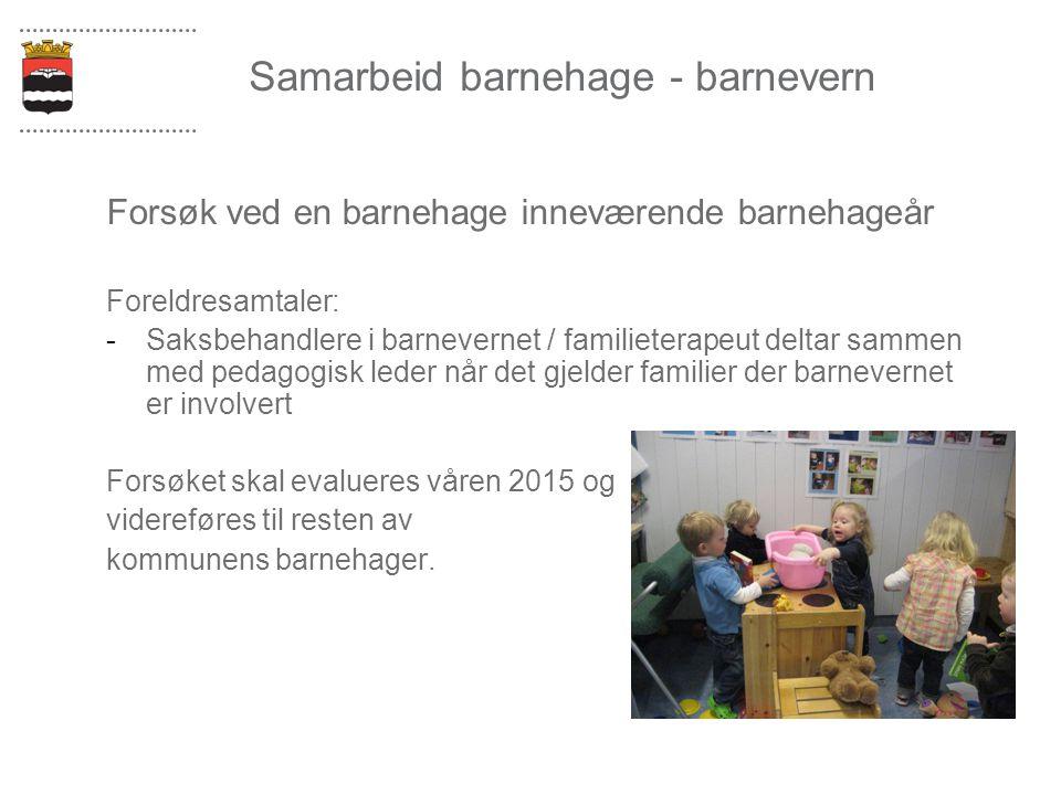Samarbeid barnehage - barnevern Forsøk ved en barnehage inneværende barnehageår Foreldresamtaler: -Saksbehandlere i barnevernet / familieterapeut delt