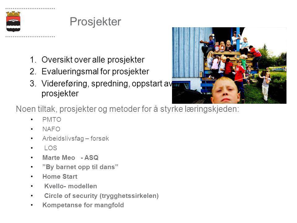Prosjekter 1.Oversikt over alle prosjekter 2.Evalueringsmal for prosjekter 3.Videreføring, spredning, oppstart av prosjekter Noen tiltak, prosjekter o