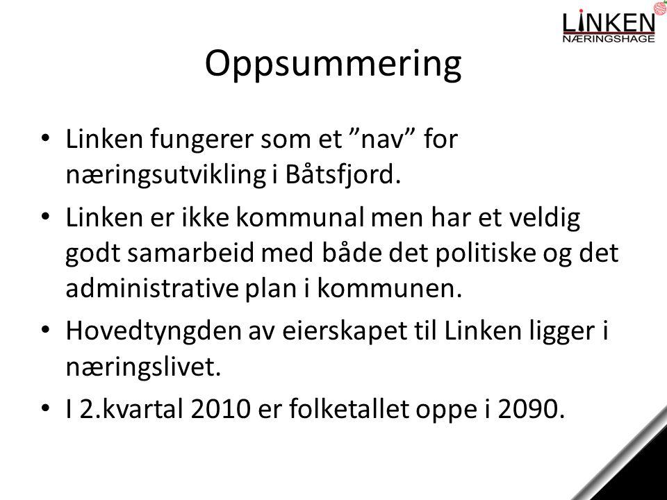 Oppsummering Linken fungerer som et nav for næringsutvikling i Båtsfjord.