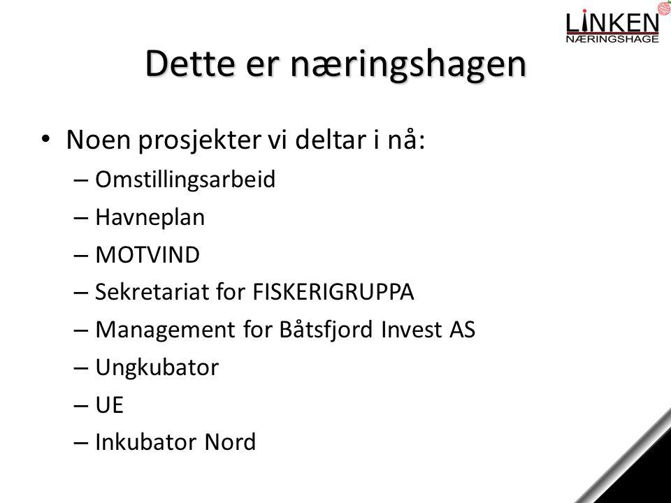 Dette er næringshagen Noen prosjekter vi deltar i nå: – Omstillingsarbeid – Havneplan – MOTVIND – Sekretariat for FISKERIGRUPPA – Management for Båtsfjord Invest AS – Ungkubator – UE – Inkubator Nord