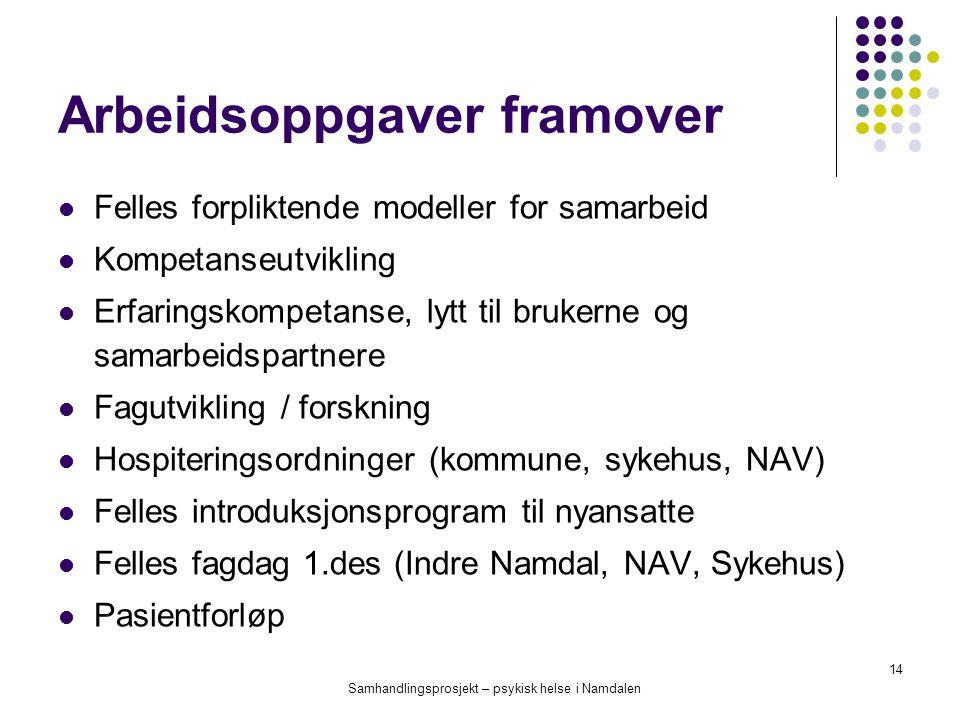 Samhandlingsprosjekt – psykisk helse i Namdalen 14 Arbeidsoppgaver framover Felles forpliktende modeller for samarbeid Kompetanseutvikling Erfaringsko