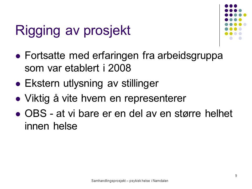 Samhandlingsprosjekt – psykisk helse i Namdalen 9 Rigging av prosjekt Fortsatte med erfaringen fra arbeidsgruppa som var etablert i 2008 Ekstern utlys