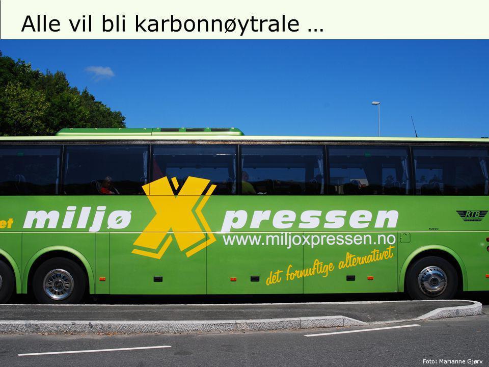 12 Alle vil bli karbonnøytrale … Foto: Marianne Gjørv