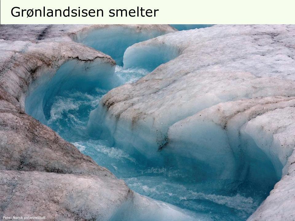 7 Isdekke i Arktis Kilde: Norsk polarinstitutt 2009 Trend: -11,7 % pr tiår