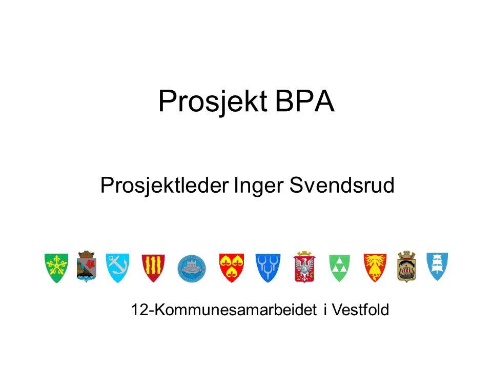 Dilemmaer for arbeidsgiver Overstyrer BPA-rundskrivene lovverk, forskrifter og kommunenes avtaleverk.