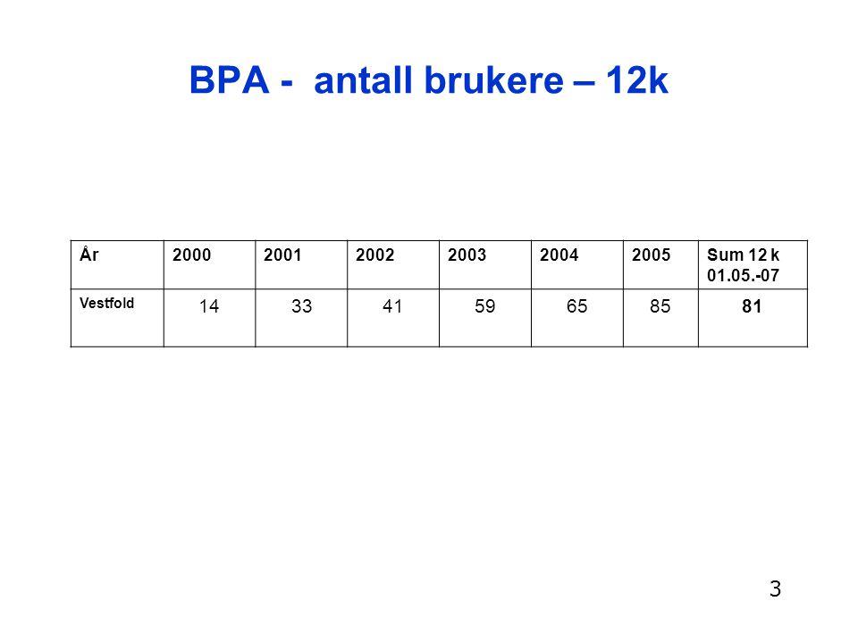 BPA-kostnader pr år Kostnadene til ordinære tilleggstjenester (hjemmesykepleie og natttjeneste) er ikke inkludert: Inntil 5,4 t/døgnet: 0,56 mill pr år 8 – 12 t/døgnet: 0,8 til 1,3 mill pr år 16 – 24 t/døgnet: 1,7 til 2,5 mill pr år 4