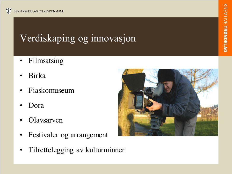 Verdiskaping og innovasjon Filmsatsing Birka Fiaskomuseum Dora Olavsarven Festivaler og arrangement Tilrettelegging av kulturminner