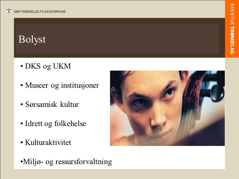 Bolyst DKS og UKM Museer og institusjoner Sørsamisk kultur Idrett og folkehelse Kulturaktivitet Miljø- og ressursforvaltning