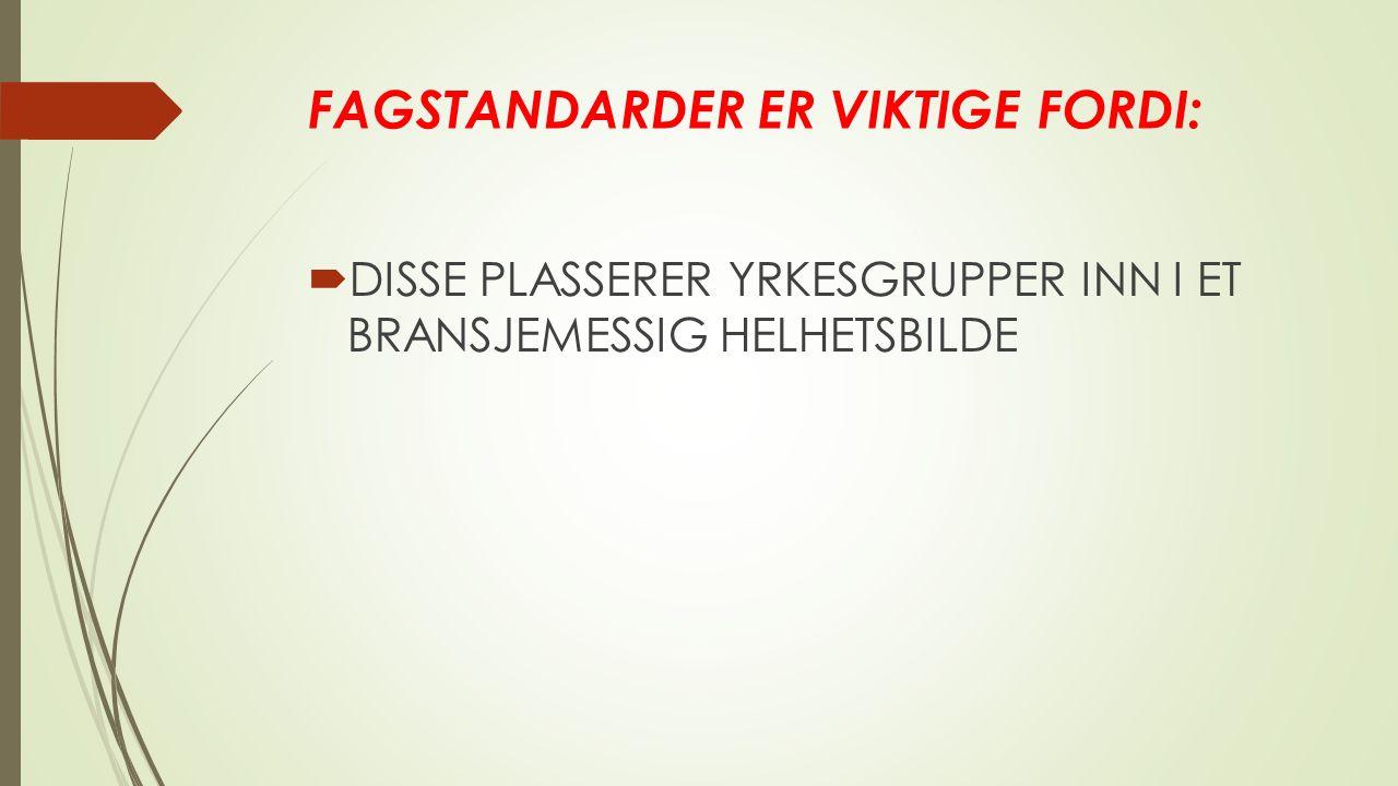 FAGSTANDARDER ER VIKTIGE FORDI:  DISSE PLASSERER YRKESGRUPPER INN I ET BRANSJEMESSIG HELHETSBILDE