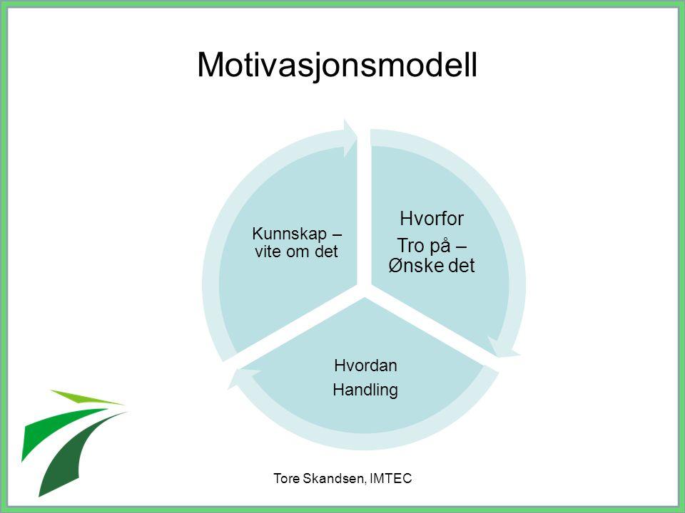 Tore Skandsen, IMTEC Motivasjonsmodell Hvorfor Tro på – Ønske det Hvordan Handling Kunnskap – vite om det