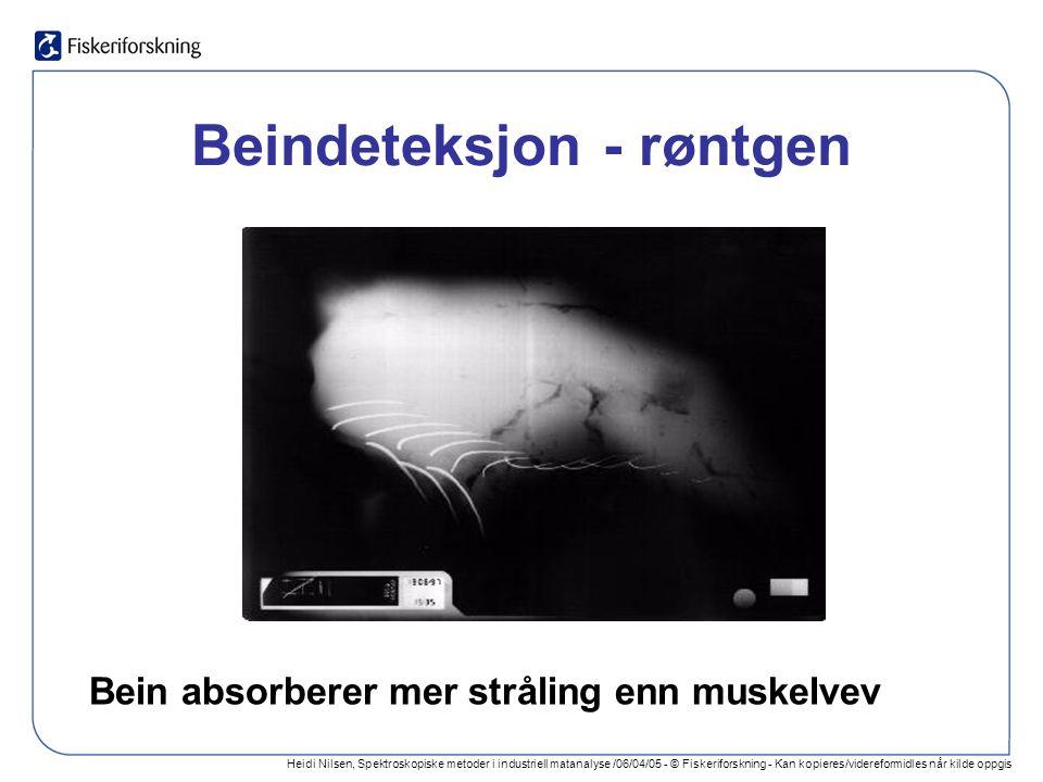 Heidi Nilsen, Spektroskopiske metoder i industriell matanalyse /06/04/05 - © Fiskeriforskning - Kan kopieres/videreformidles når kilde oppgis Beindeteksjon - røntgen Bein absorberer mer stråling enn muskelvev